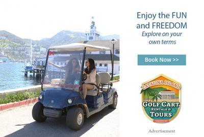 people using a golf cart to tour around