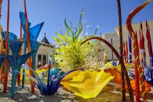 Beautiful display of glass sculptures on Catalina Island